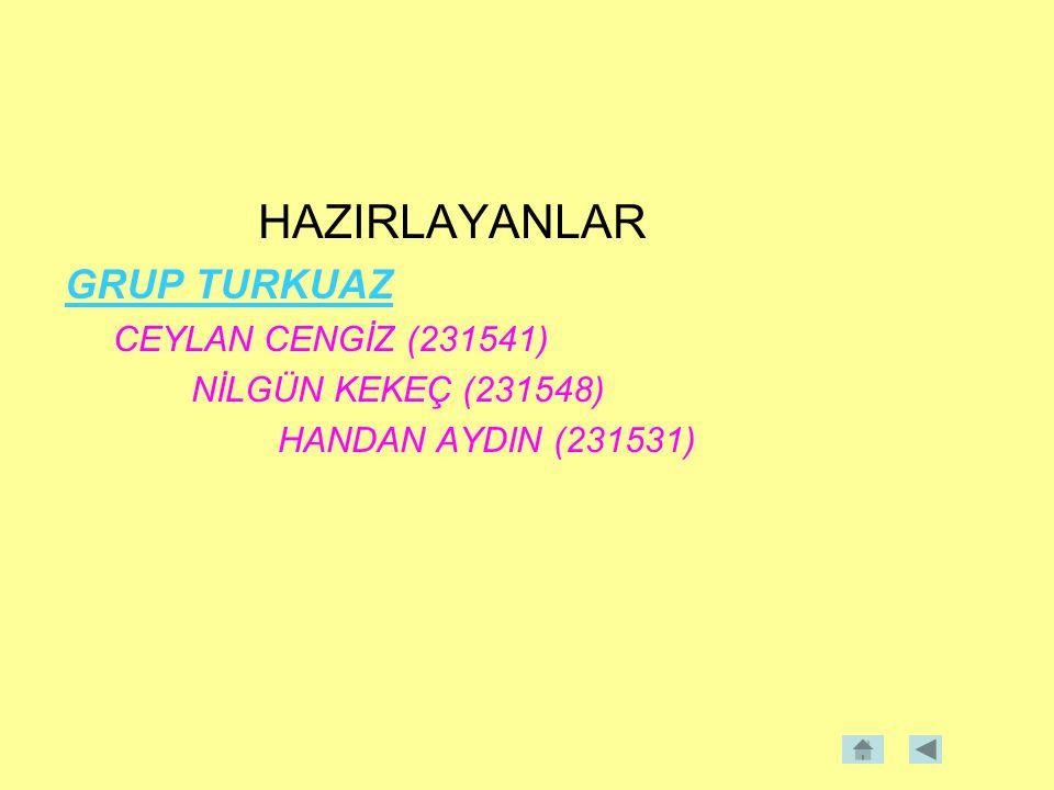 HAZIRLAYANLAR GRUP TURKUAZ CEYLAN CENGİZ (231541)