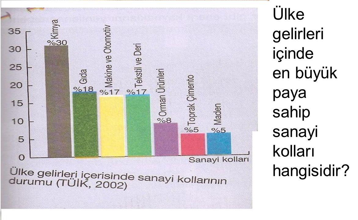 Ülke gelirleri içinde en büyük paya sahip sanayi kolları hangisidir