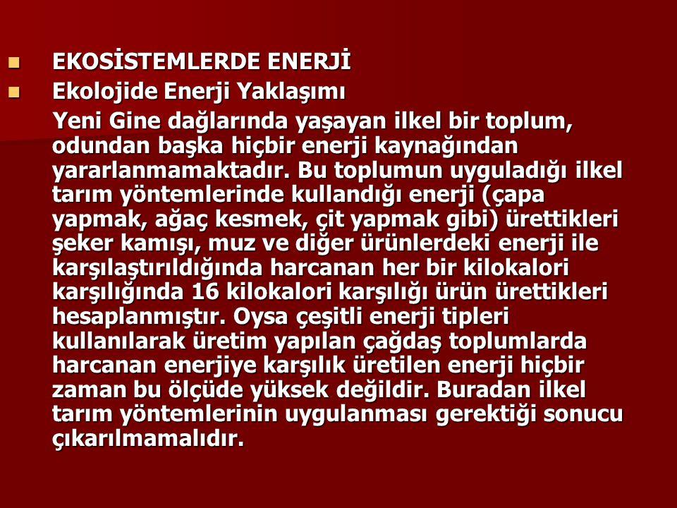 EKOSİSTEMLERDE ENERJİ