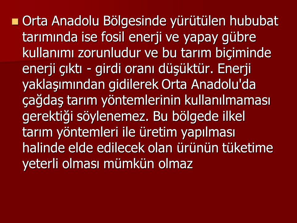 Orta Anadolu Bölgesinde yürütülen hububat tarımında ise fosil enerji ve yapay gübre kullanımı zorunludur ve bu tarım biçiminde enerji çıktı - girdi oranı düşüktür.