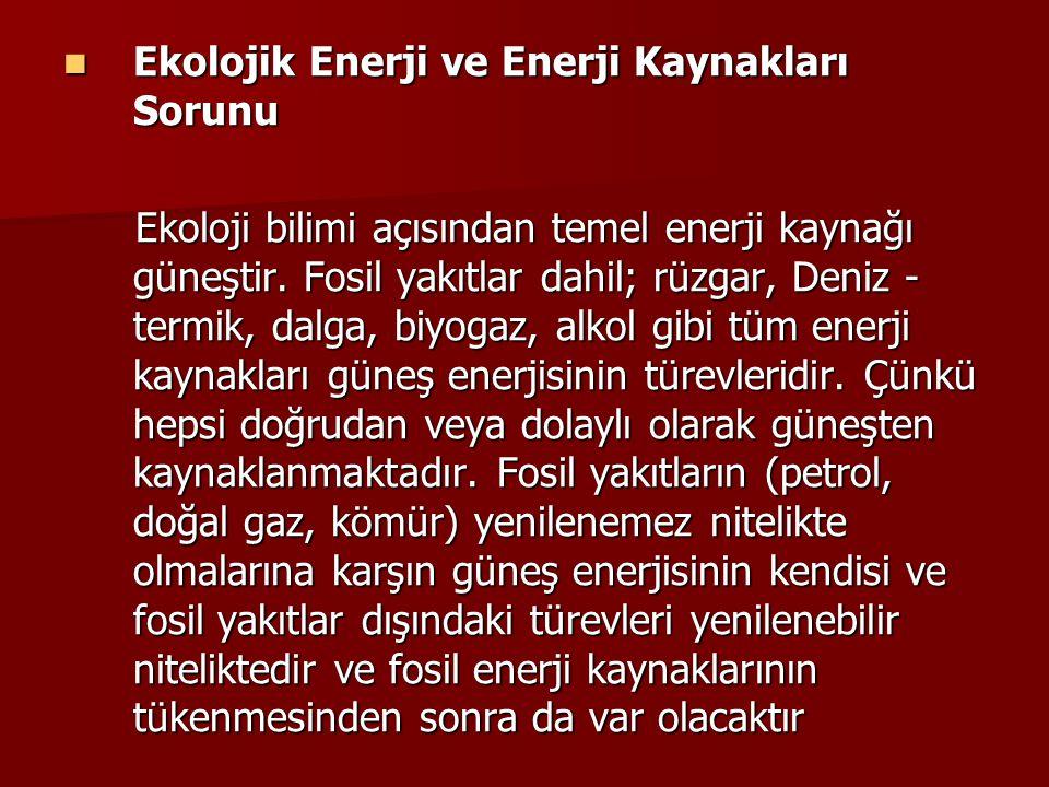 Ekolojik Enerji ve Enerji Kaynakları Sorunu