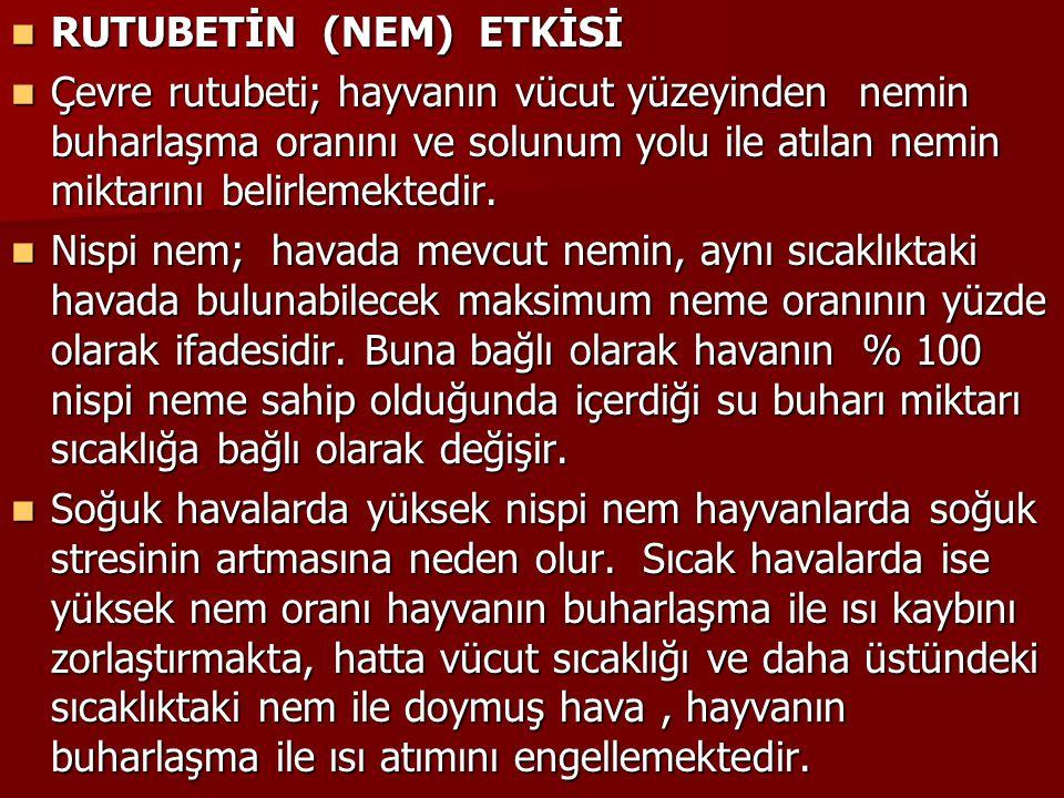 RUTUBETİN (NEM) ETKİSİ