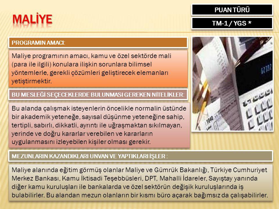 MALİYE PUAN TÜRÜ TM-1 / YGS *