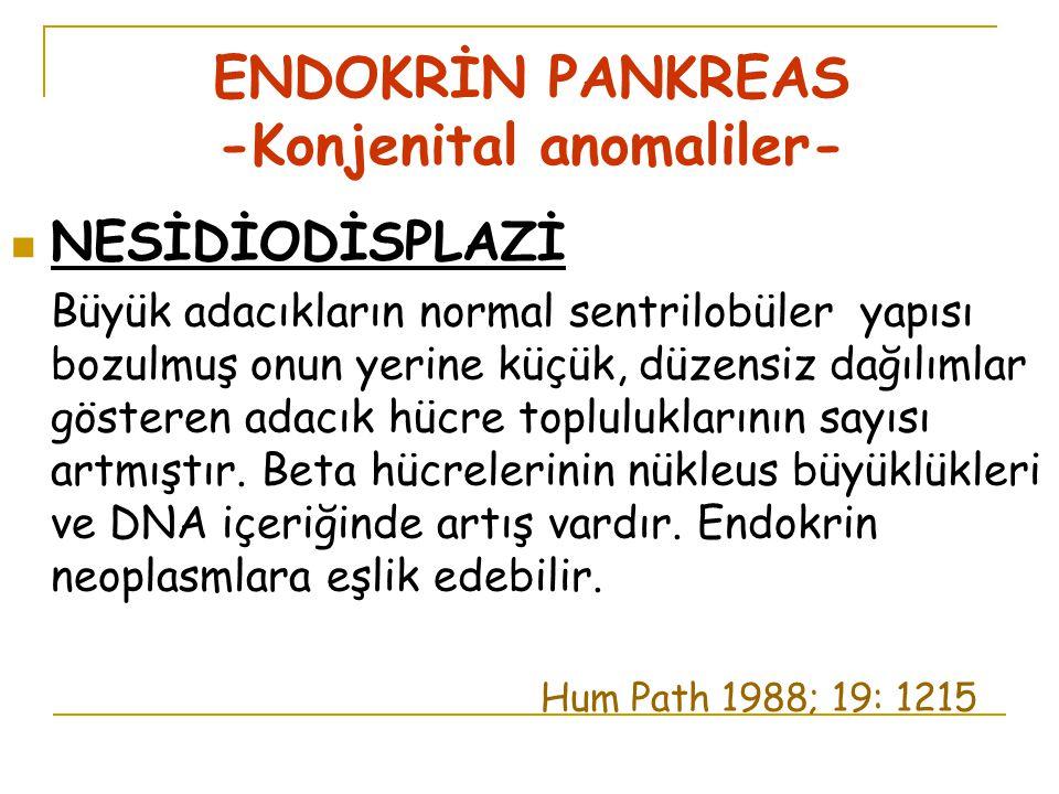 ENDOKRİN PANKREAS -Konjenital anomaliler-