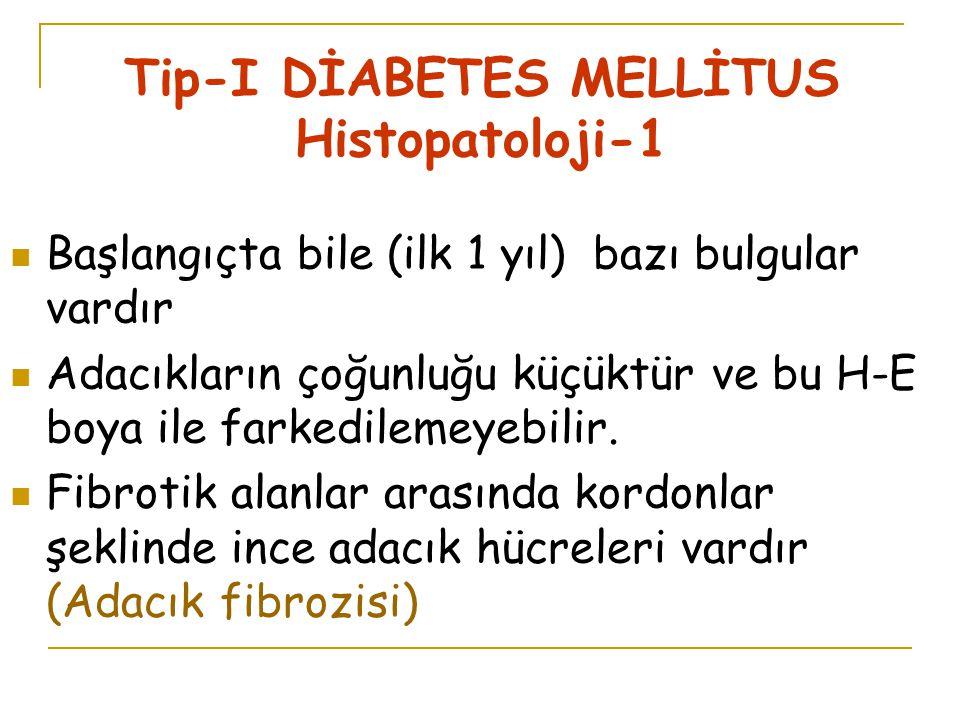 Tip-I DİABETES MELLİTUS Histopatoloji-1