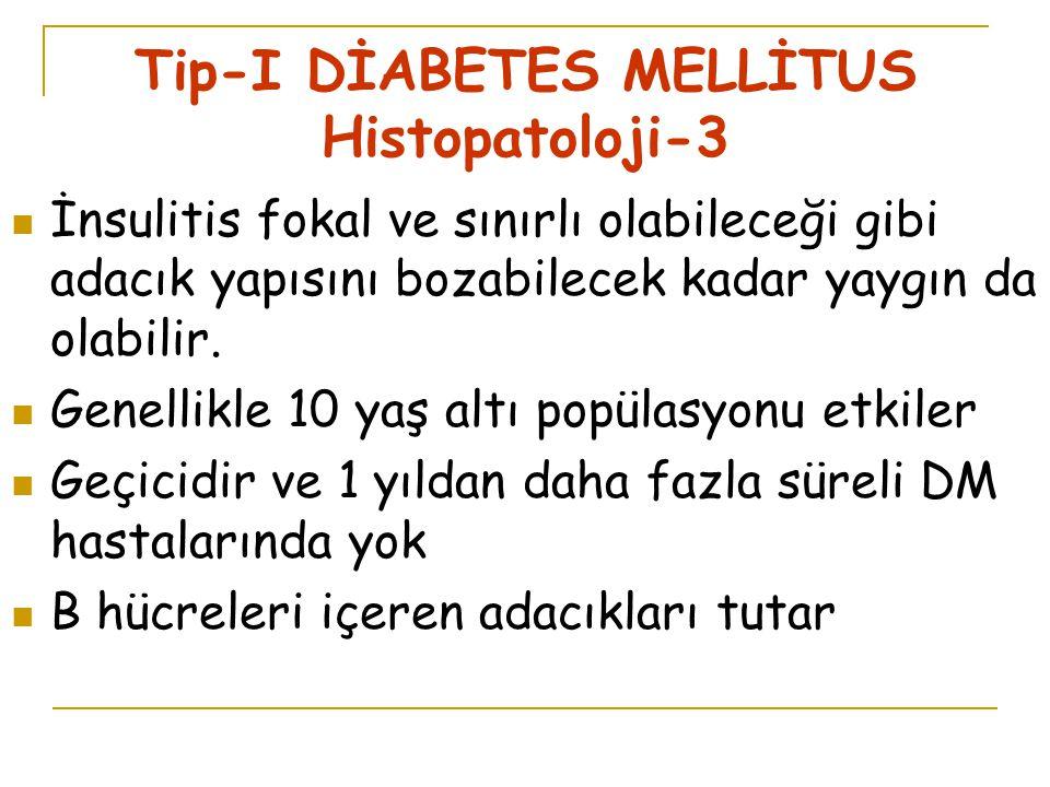 Tip-I DİABETES MELLİTUS Histopatoloji-3