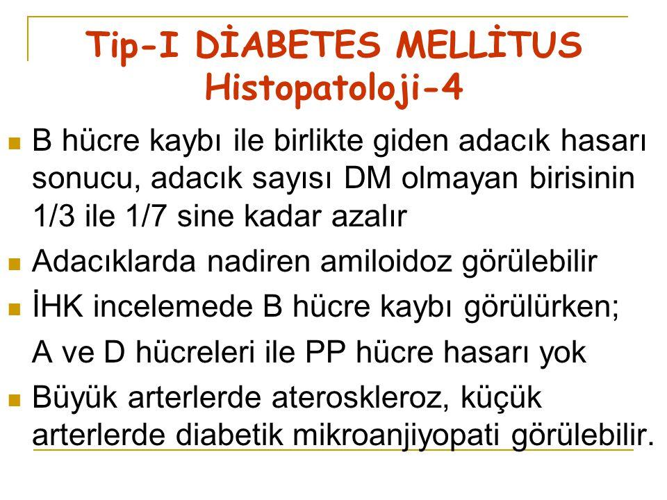 Tip-I DİABETES MELLİTUS Histopatoloji-4
