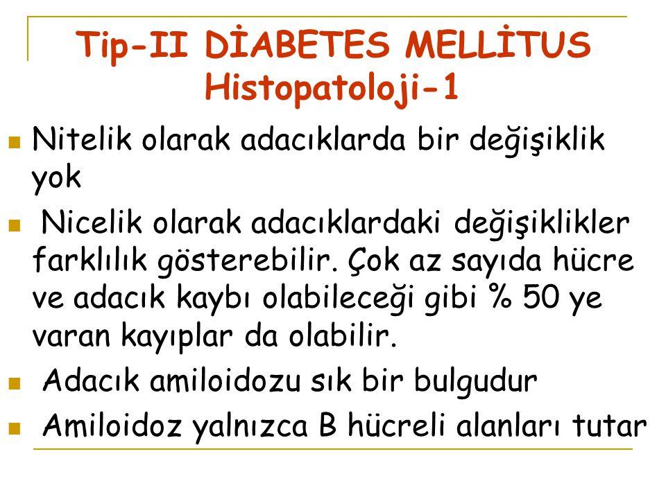 Tip-II DİABETES MELLİTUS Histopatoloji-1