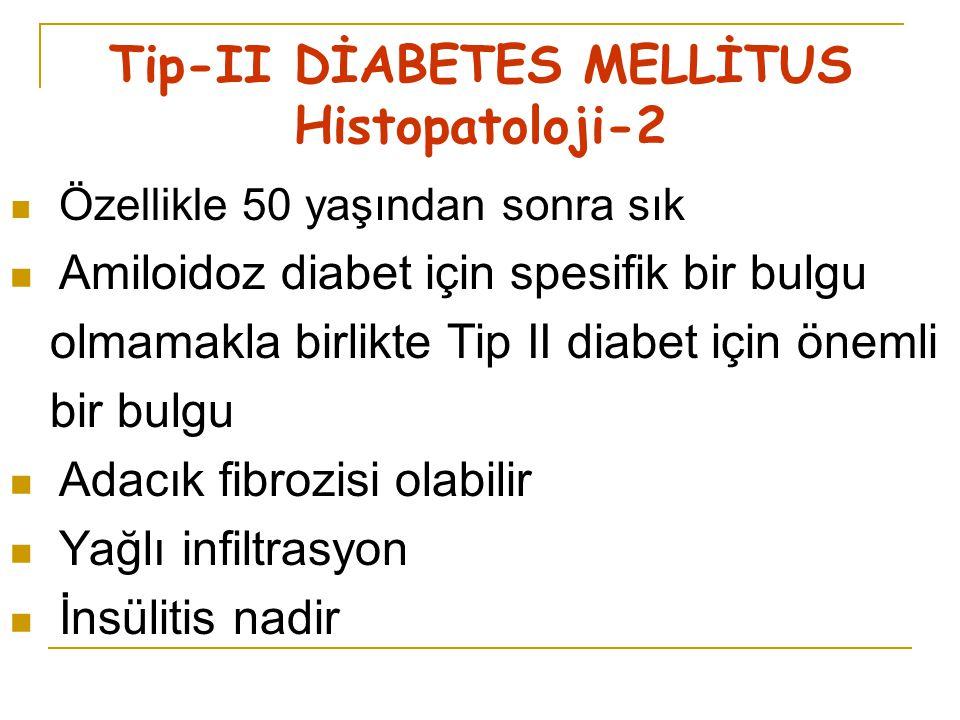 Tip-II DİABETES MELLİTUS Histopatoloji-2
