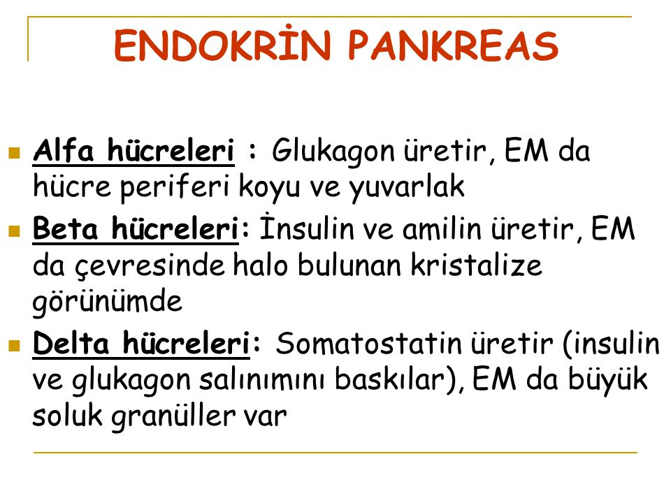 ENDOKRİN PANKREAS Alfa hücreleri : Glukagon üretir, EM da hücre periferi koyu ve yuvarlak.