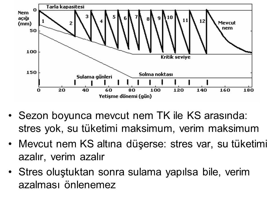 Sezon boyunca mevcut nem TK ile KS arasında: stres yok, su tüketimi maksimum, verim maksimum