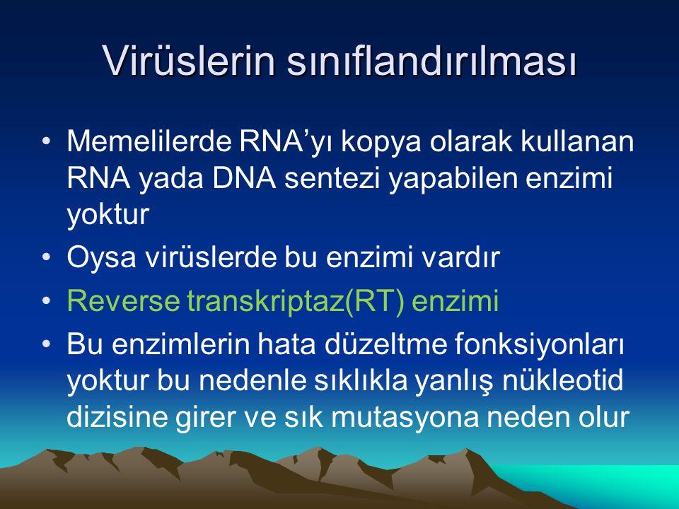 Virüslerin sınıflandırılması