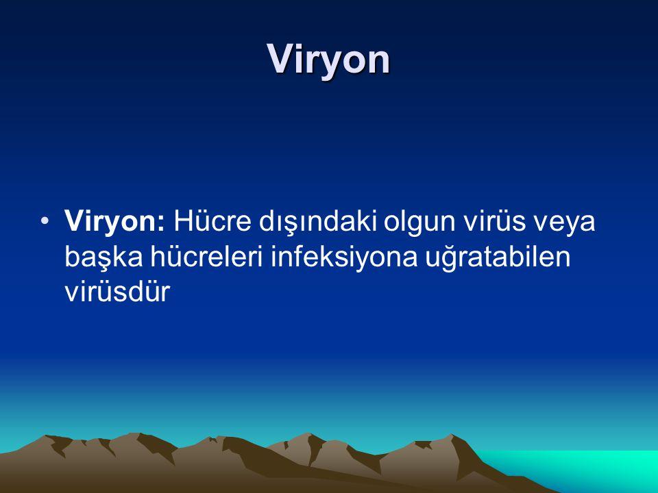 Viryon Viryon: Hücre dışındaki olgun virüs veya başka hücreleri infeksiyona uğratabilen virüsdür