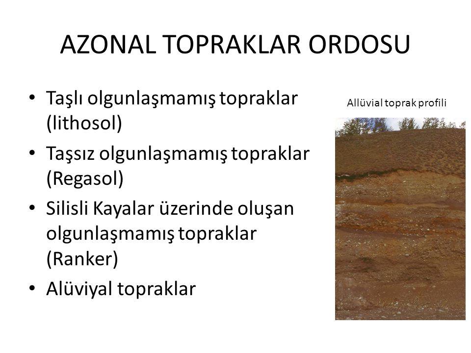 AZONAL TOPRAKLAR ORDOSU