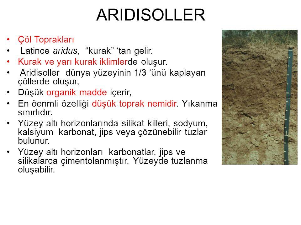 ARIDISOLLER Çöl Toprakları Latince aridus, kurak 'tan gelir.