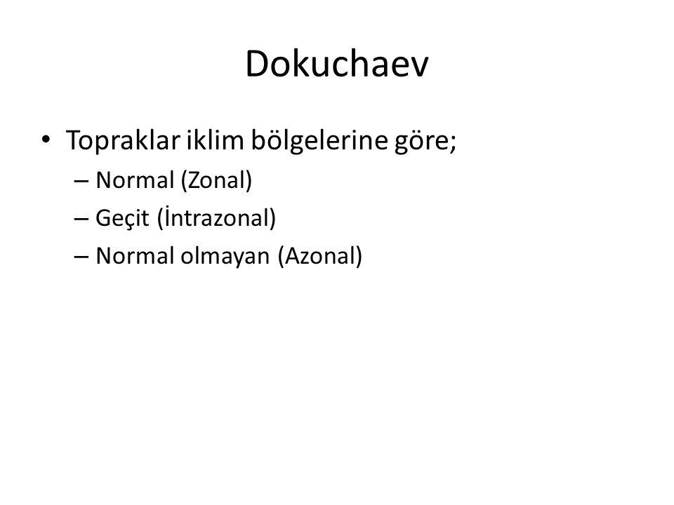 Dokuchaev Topraklar iklim bölgelerine göre; Normal (Zonal)
