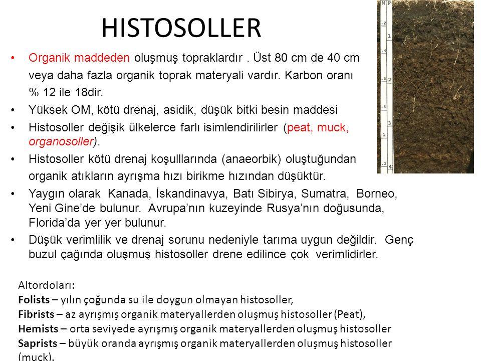 HISTOSOLLER Organik maddeden oluşmuş topraklardır . Üst 80 cm de 40 cm