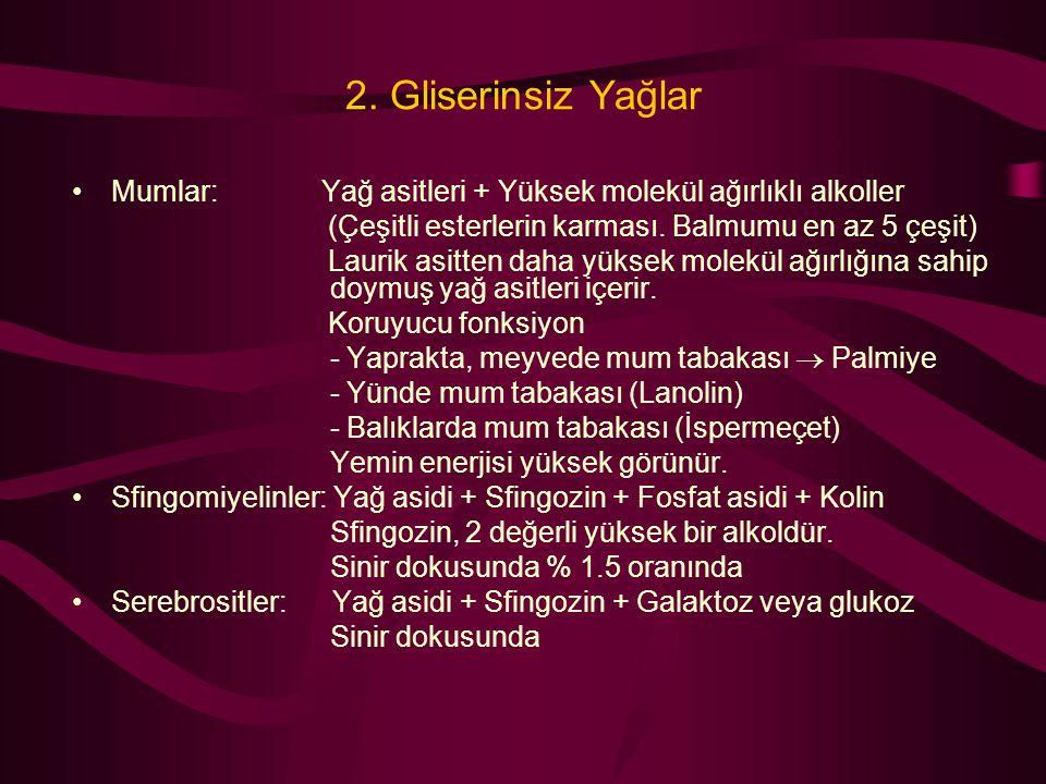 2. Gliserinsiz Yağlar Mumlar: Yağ asitleri + Yüksek molekül ağırlıklı alkoller. (Çeşitli esterlerin karması. Balmumu en az 5 çeşit)