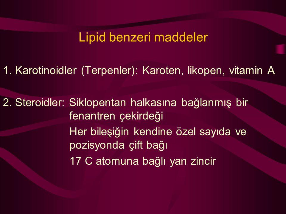 Lipid benzeri maddeler