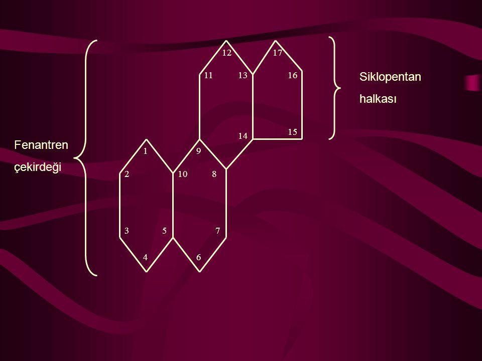 Siklopentan halkası Fenantren çekirdeği 1 2 3 4 5 6 7 8 9 10 11 12 13