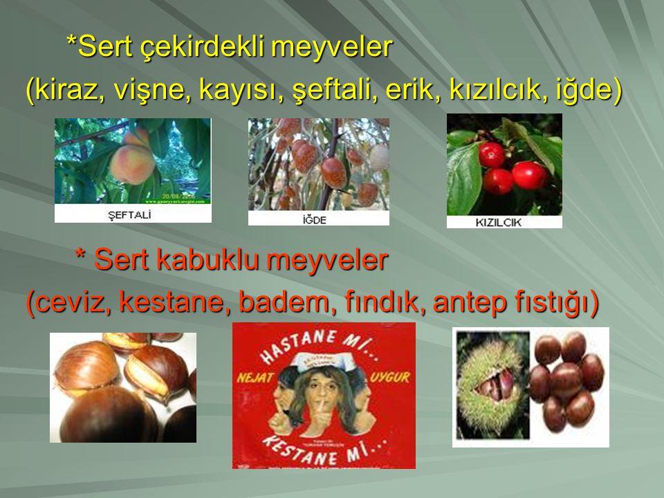 *Sert çekirdekli meyveler