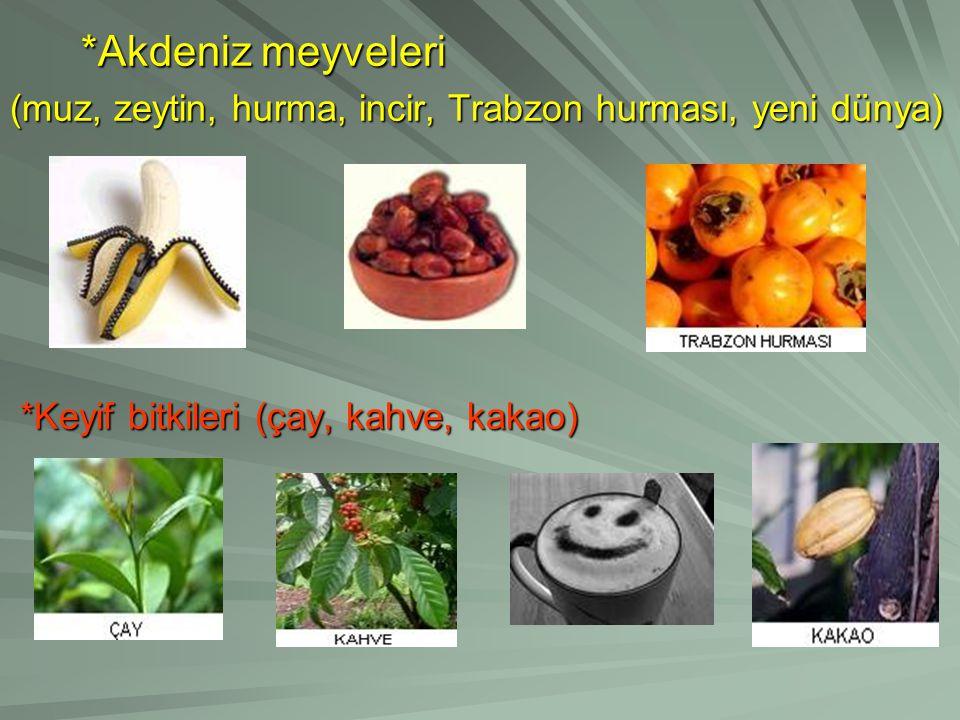 *Akdeniz meyveleri (muz, zeytin, hurma, incir, Trabzon hurması, yeni dünya) *Keyif bitkileri (çay, kahve, kakao)