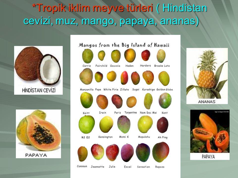*Tropik iklim meyve türleri ( Hindistan cevizi, muz, mango, papaya, ananas)