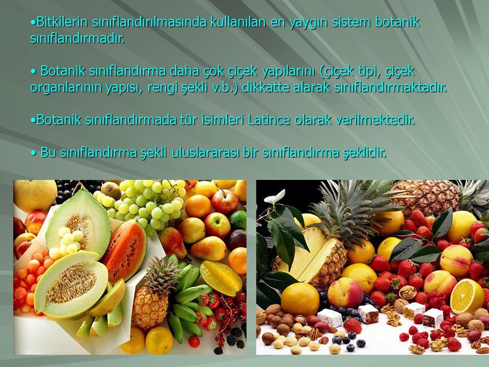Bitkilerin sınıflandırılmasında kullanılan en yaygın sistem botanik sınıflandırmadır.