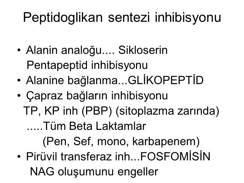 Peptidoglikan sentezi inhibisyonu