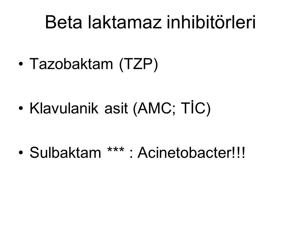 Beta laktamaz inhibitörleri