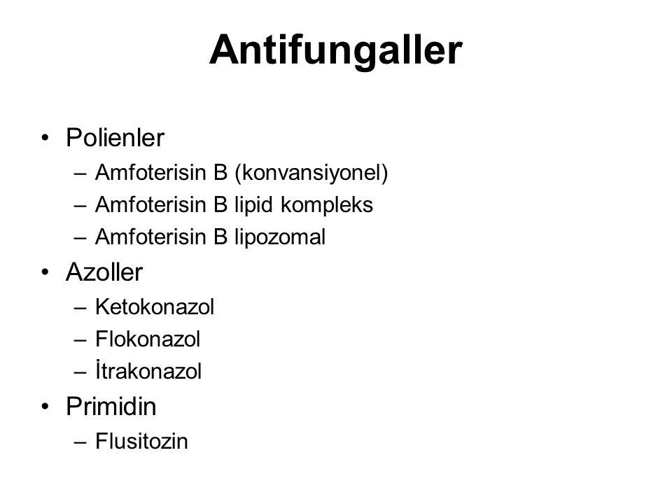 Antifungaller Polienler Azoller Primidin Amfoterisin B (konvansiyonel)