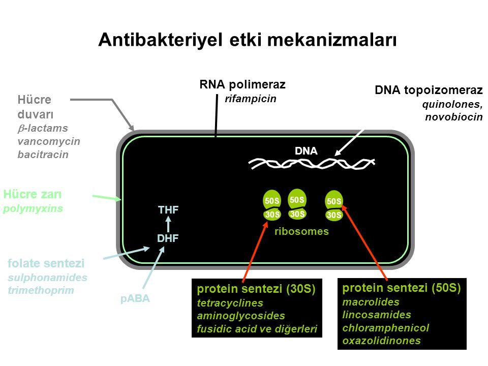 Antibakteriyel etki mekanizmaları