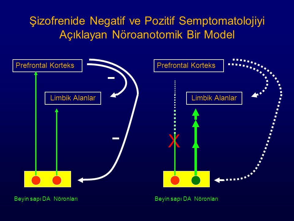 Şizofrenide Negatif ve Pozitif Semptomatolojiyi Açıklayan Nöroanotomik Bir Model