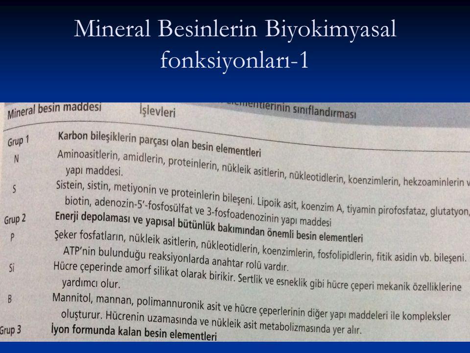 Mineral Besinlerin Biyokimyasal fonksiyonları-1