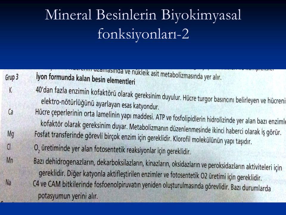 Mineral Besinlerin Biyokimyasal fonksiyonları-2