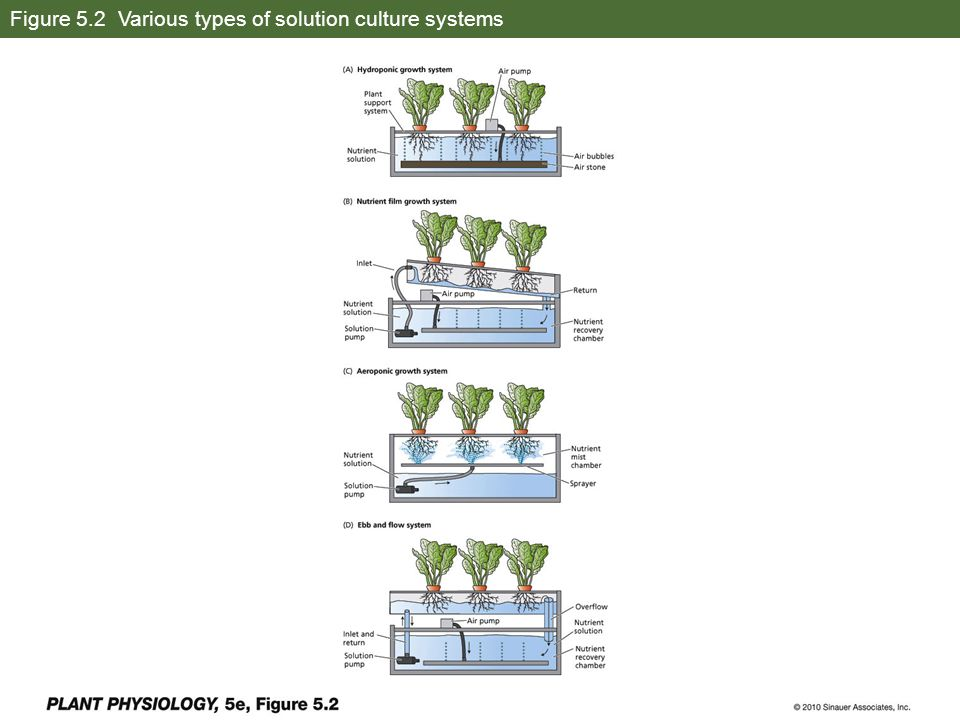 Figure 5.2 Various types of solution culture systems