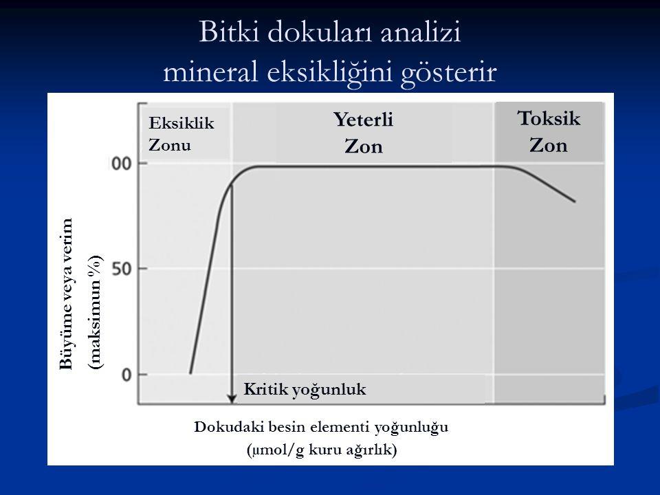 Bitki dokuları analizi mineral eksikliğini gösterir