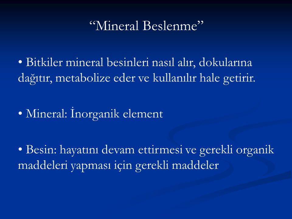 Mineral Beslenme • Bitkiler mineral besinleri nasıl alır, dokularına dağıtır, metabolize eder ve kullanılır hale getirir.