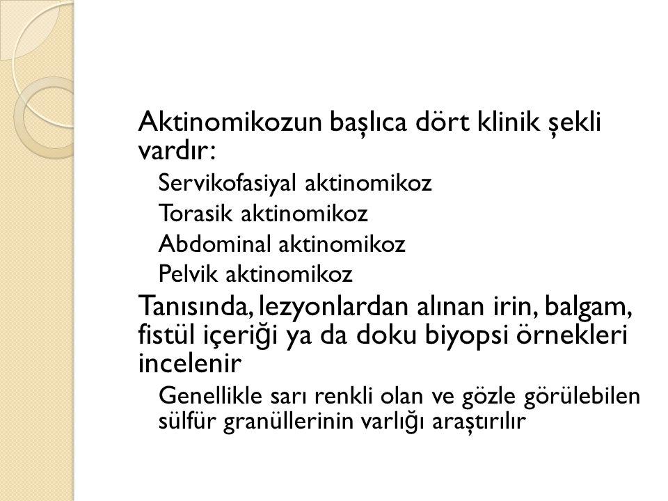 Aktinomikozun başlıca dört klinik şekli vardır: