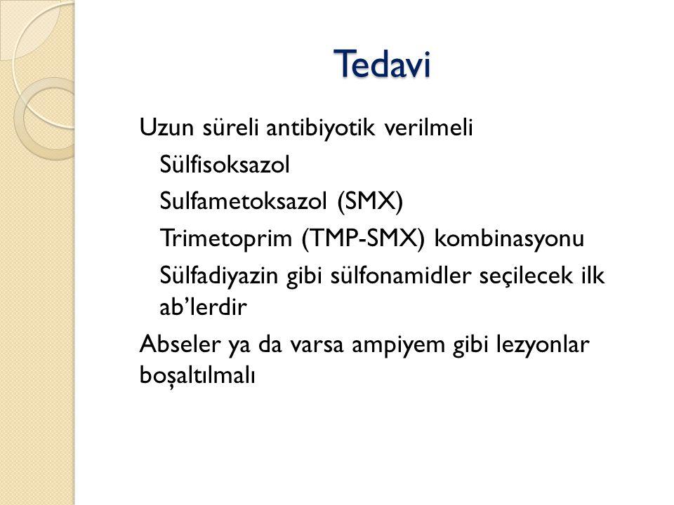 Tedavi Uzun süreli antibiyotik verilmeli Sülfisoksazol
