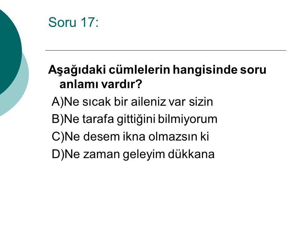 Soru 17: Aşağıdaki cümlelerin hangisinde soru anlamı vardır