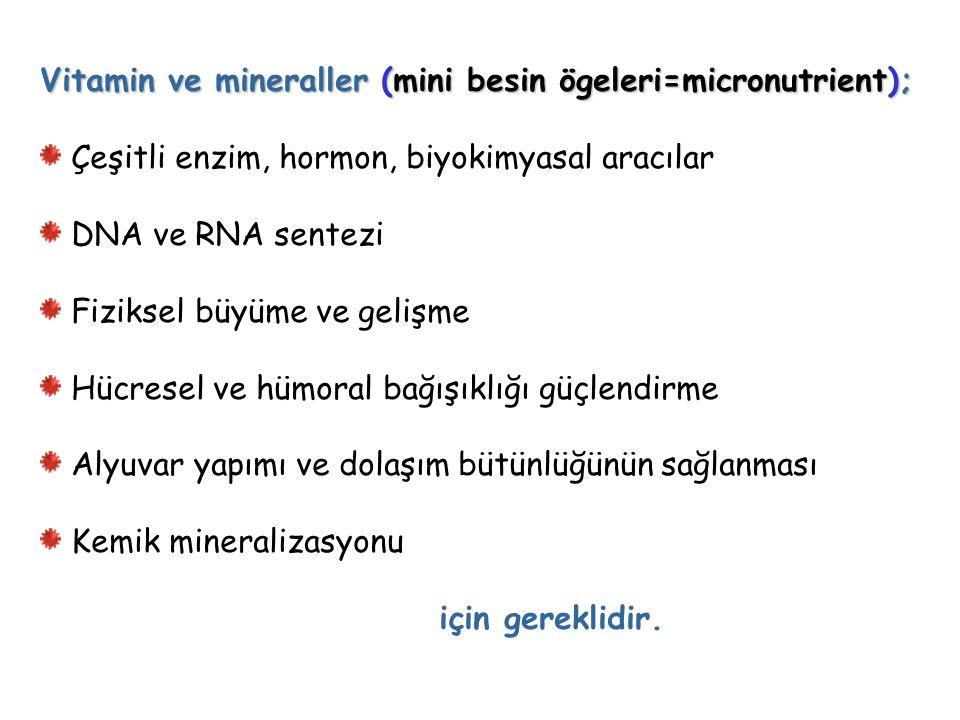 Vitamin ve mineraller (mini besin ögeleri=micronutrient);