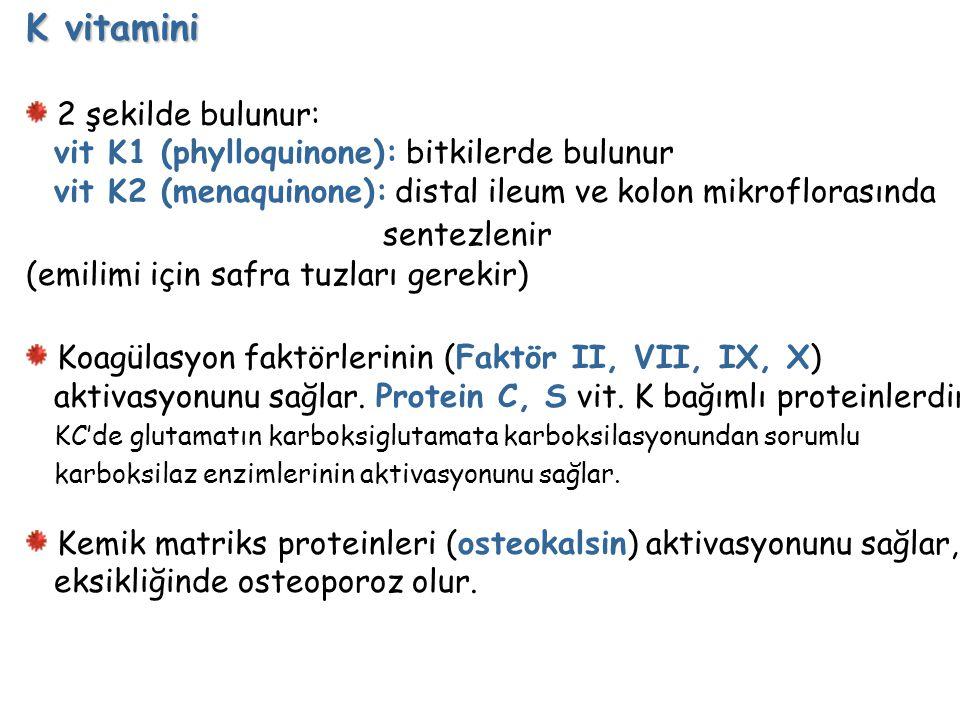 K vitamini sentezlenir 2 şekilde bulunur: