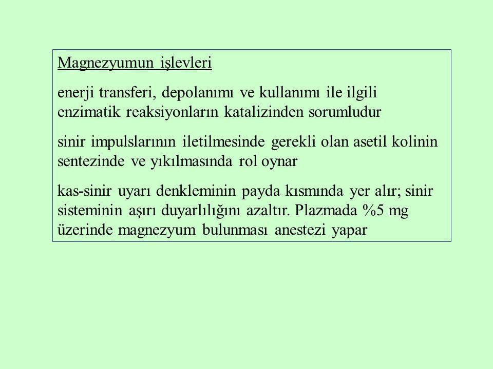 Magnezyumun işlevleri