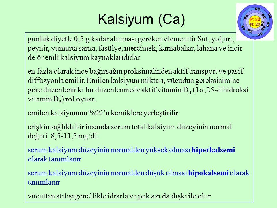 Kalsiyum (Ca)
