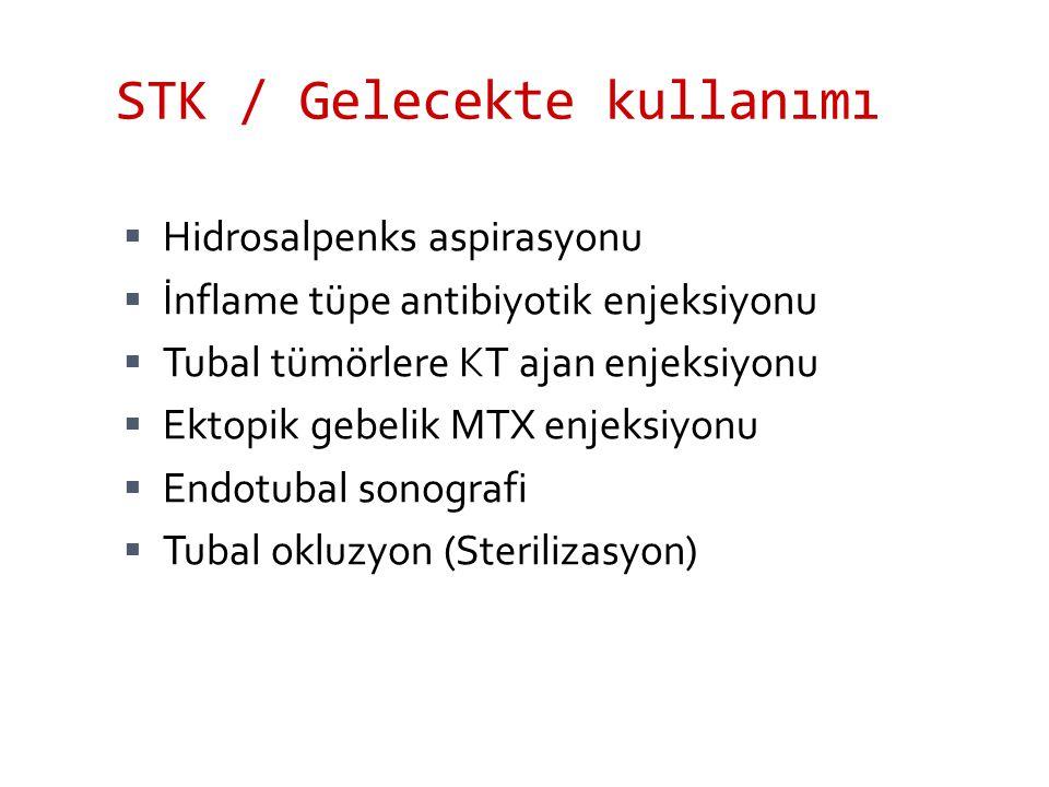 STK / Gelecekte kullanımı