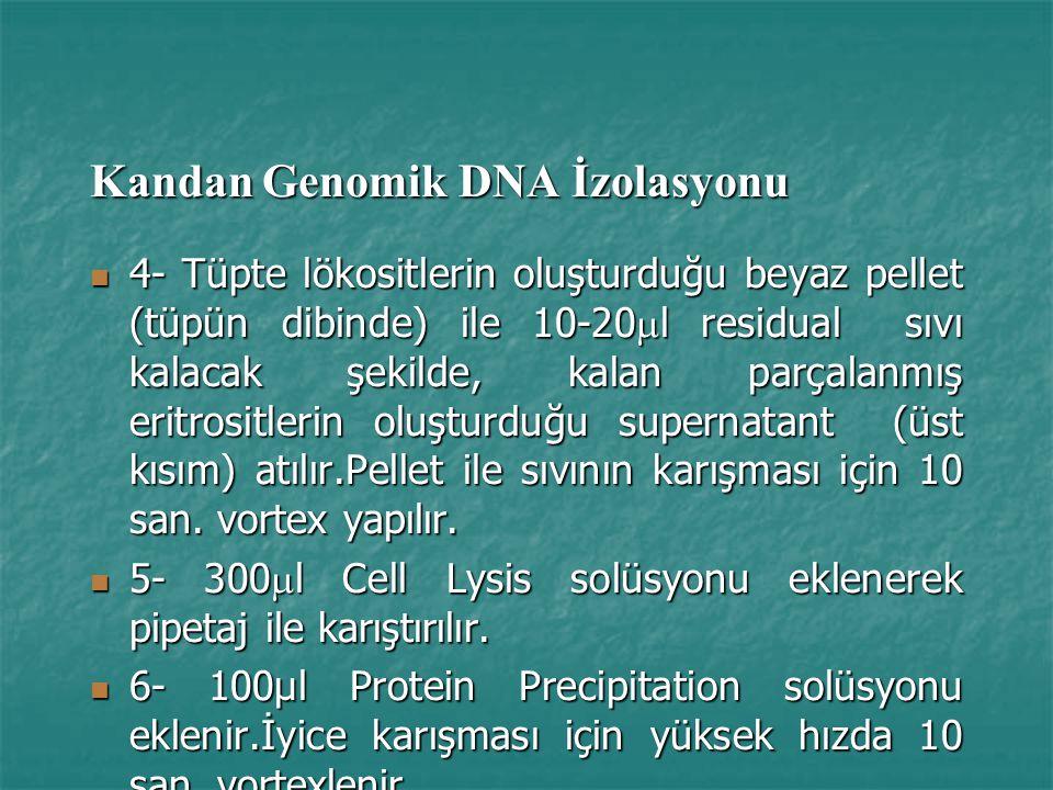 Kandan Genomik DNA İzolasyonu