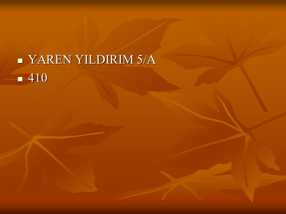 YAREN YILDIRIM 5/A 410