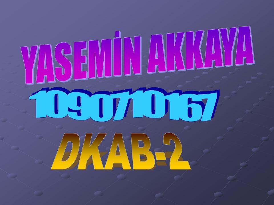 YASEMİN AKKAYA 1090710167 DKAB-2