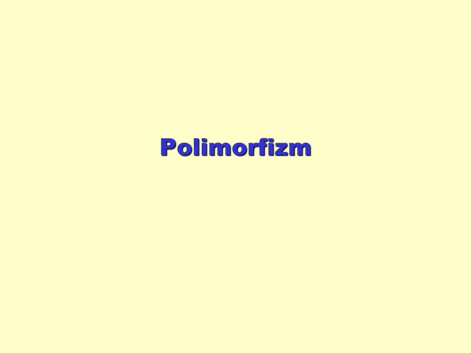 Polimorfizm